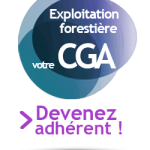 exploitation-forestiere-